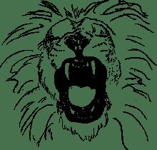 Lion TRCL 220