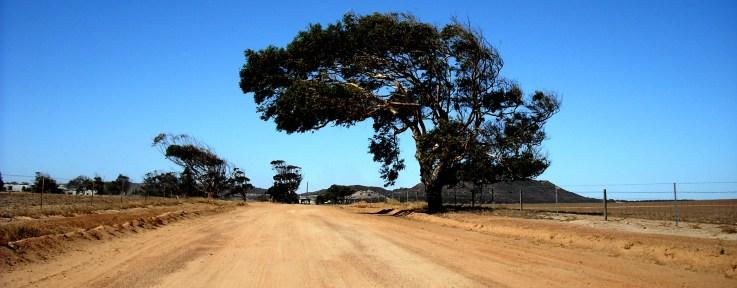 random drive into the desert in Australia