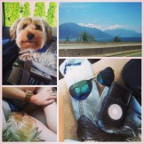 Mini trip to Whistler