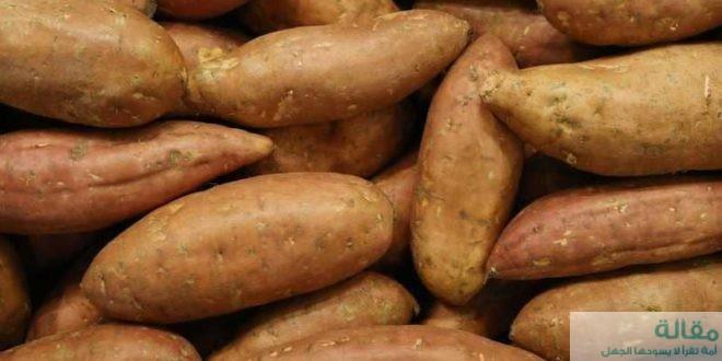فوائد البطاطا الحلوة لمرضى السكري