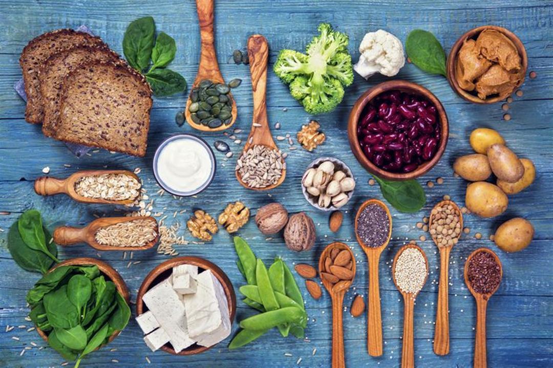 إضافة البروتين للنظام النباتي