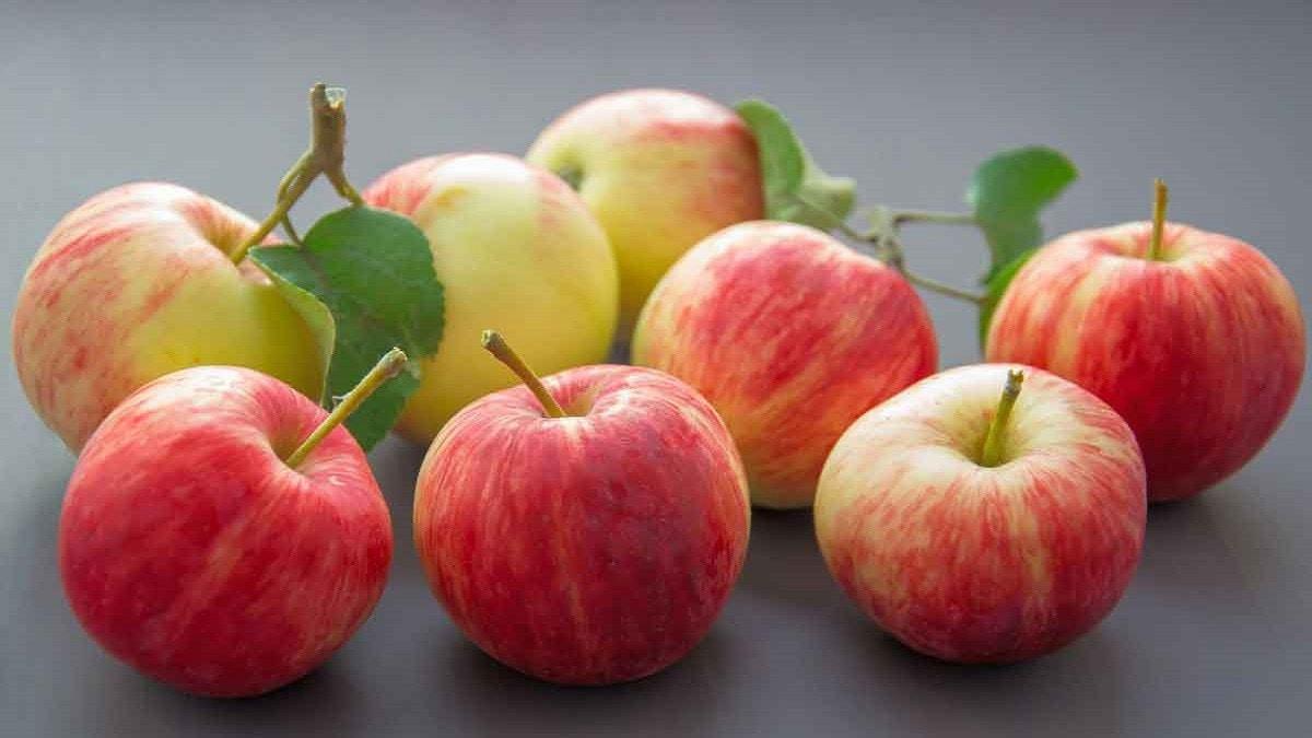 آثار جانبية محتملة لتناول الكثير من التفاح