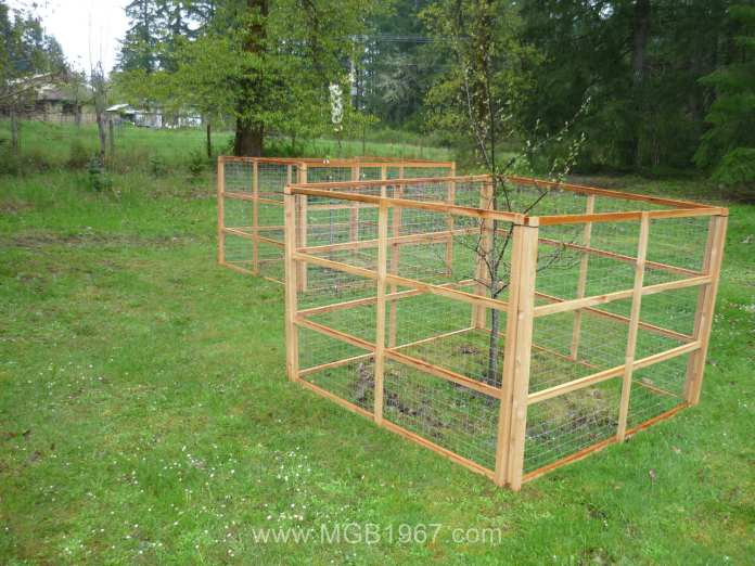 Deer fence around fruit trees