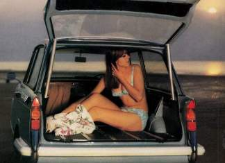 Bikini gal in trunk at beach
