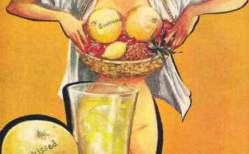 Sun Kissed Grapefruit Chick