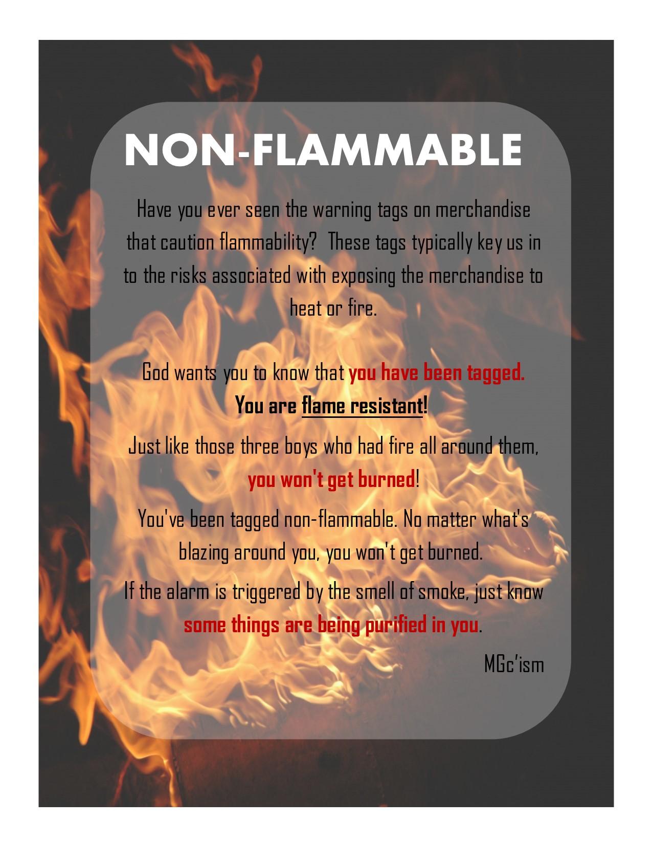 Non Flammable Mg Consultation Llc