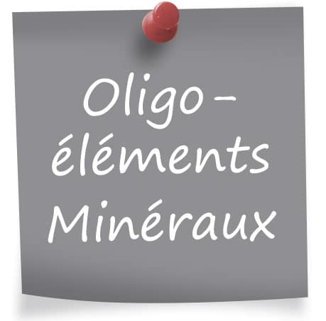 Les compléments alimentaires oligo-éléments et minéraux