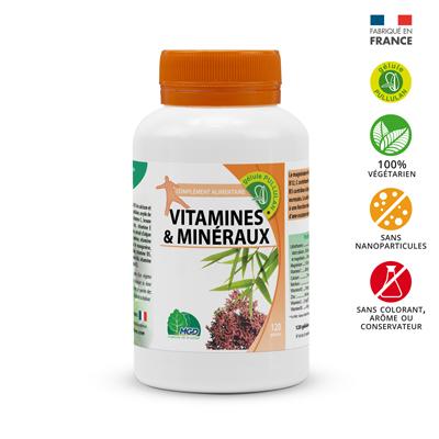 Complément alimentaire vitamines et minéraux