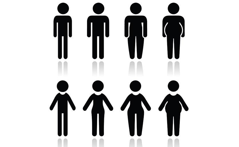 Body-Type-Banner