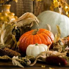 white-and-orange-pumpkins-on-table-3094074