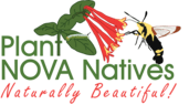 Plant NOVA Natives Logo