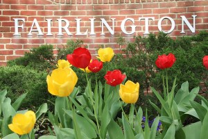 Fairlington Citizens Association