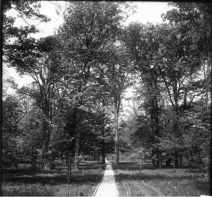 Bishops Woods in the early 20th century at Miami University, Oxford. OH.