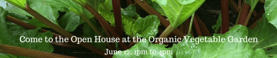 Sunday in the Organic Vegetable Garden Open House, June 12, 1 pm to 4 pm