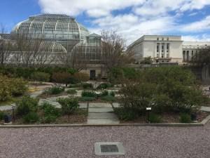 Octagonal beds of the Margaret Hagedorn Rose Garden with the Botanic Garden conservatory beyond