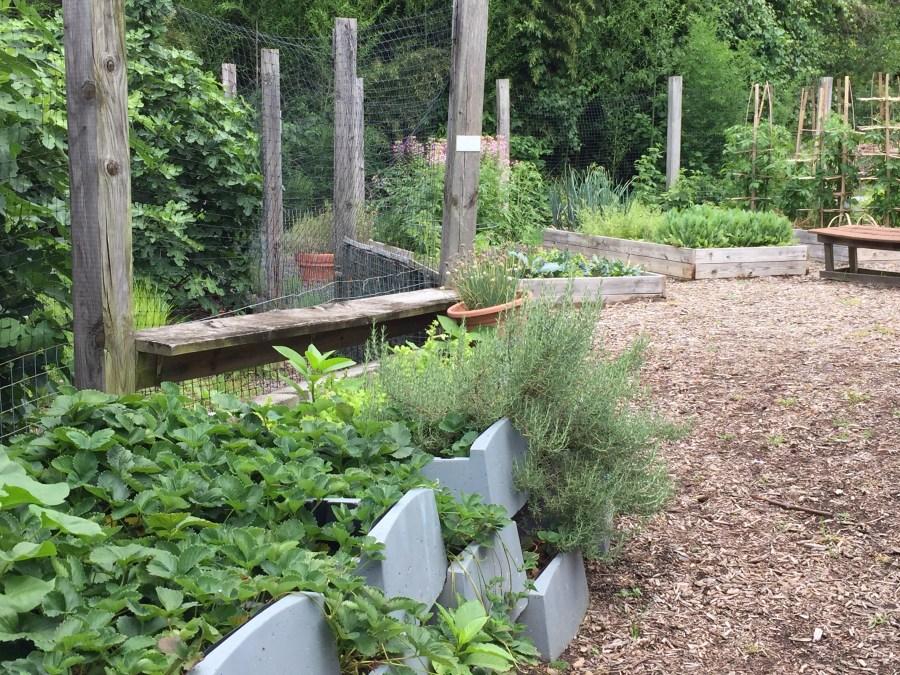 Teaching and demonstration garden