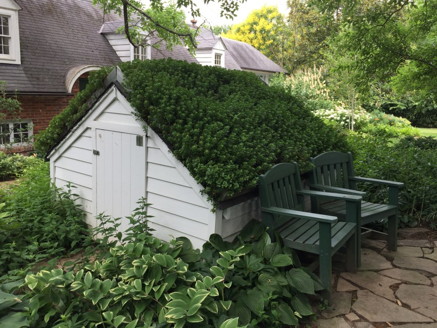 Shed with Green Roof
