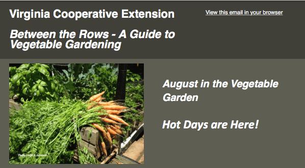 VCE Garden Guide - Between the Rows