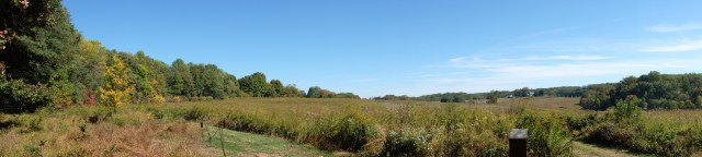 Panorama of Meadow Garden at Longwood Gardens.