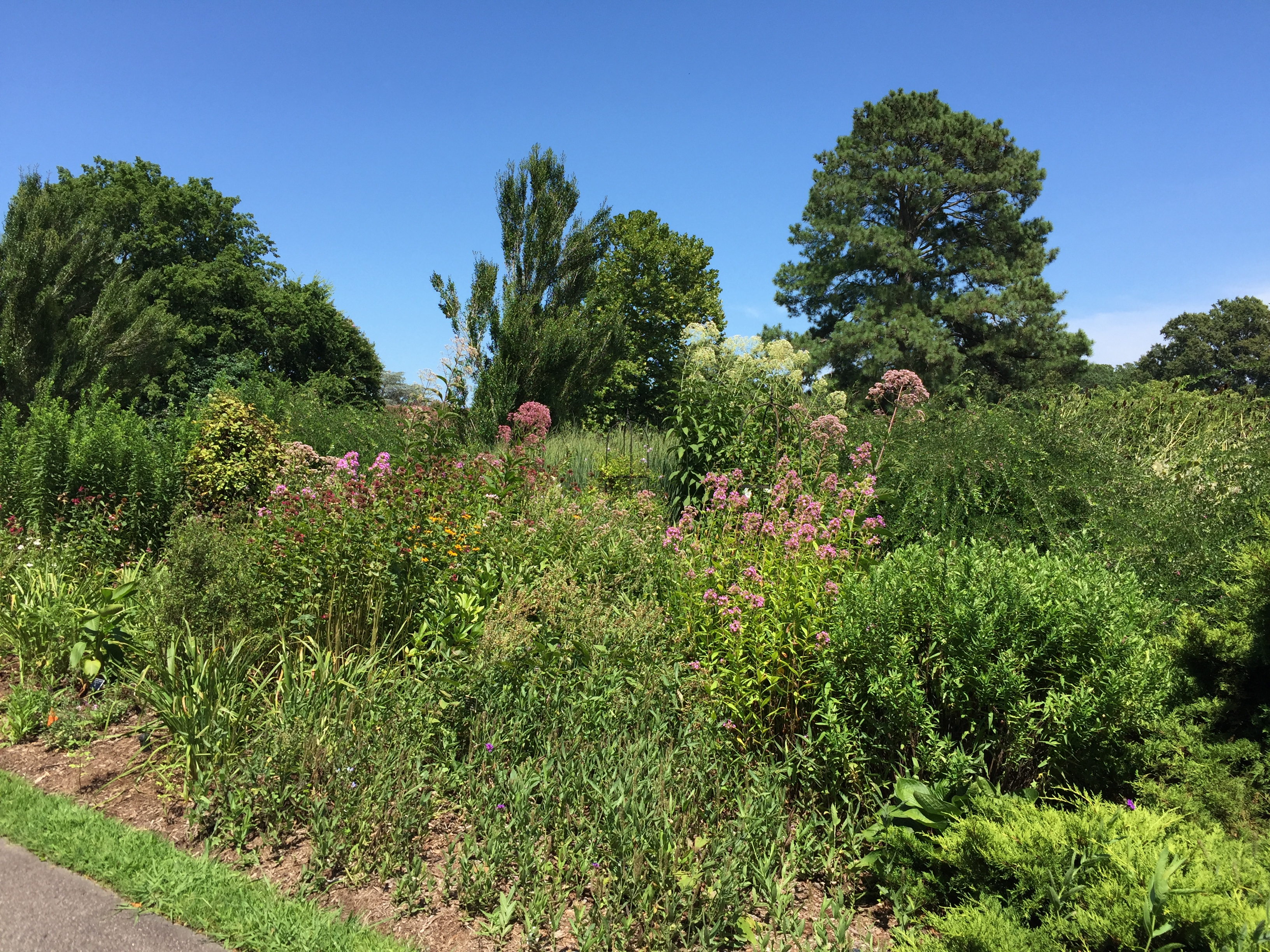 The Border Garden is inspired by renowned landscape designers Beatrix Farrand and Gertrude Jekyll. Photo © 2018 Elaine Mills.