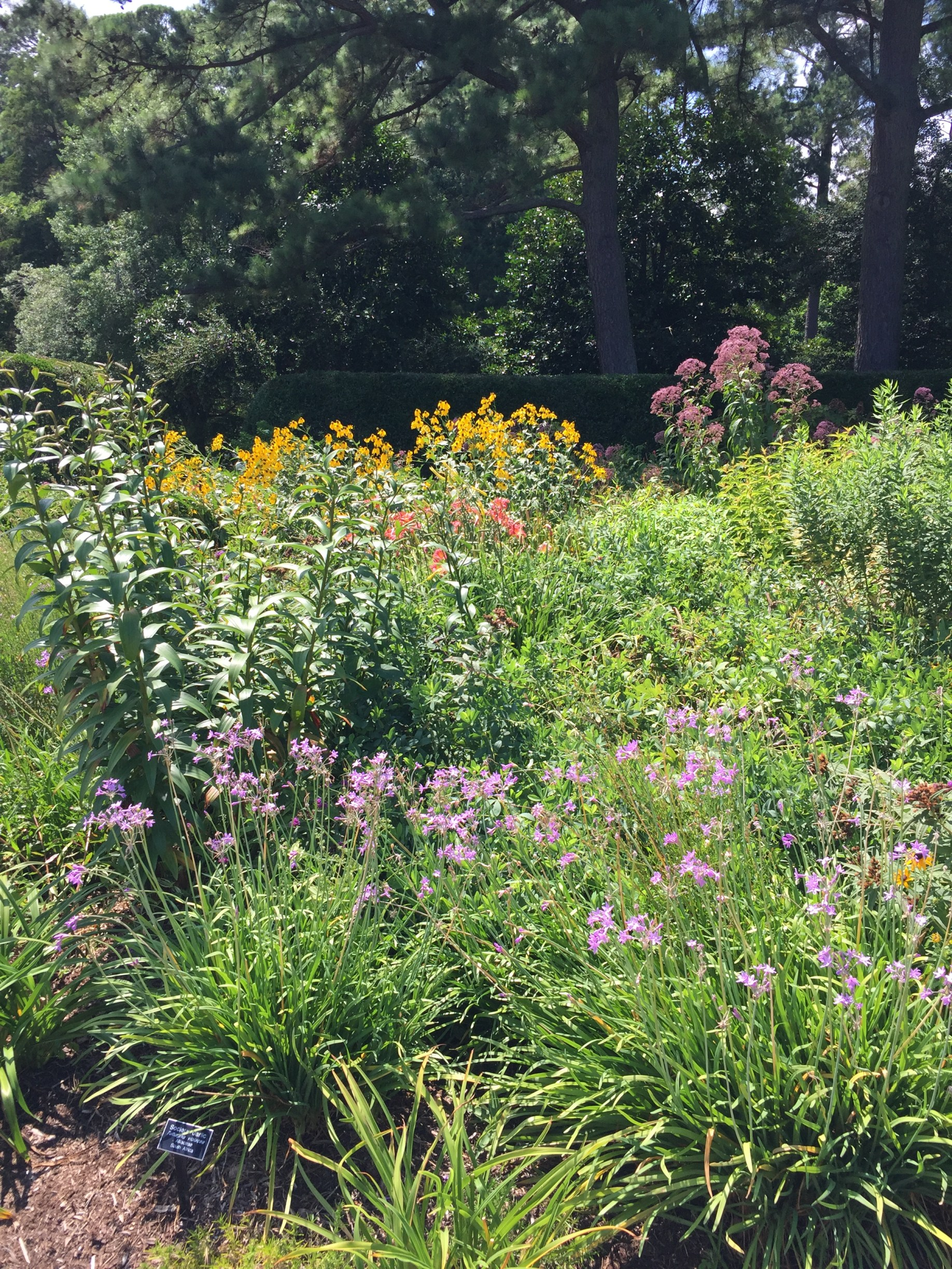 The Perennial Garden overflows with colorful plantings. Photo © Elaine Mills