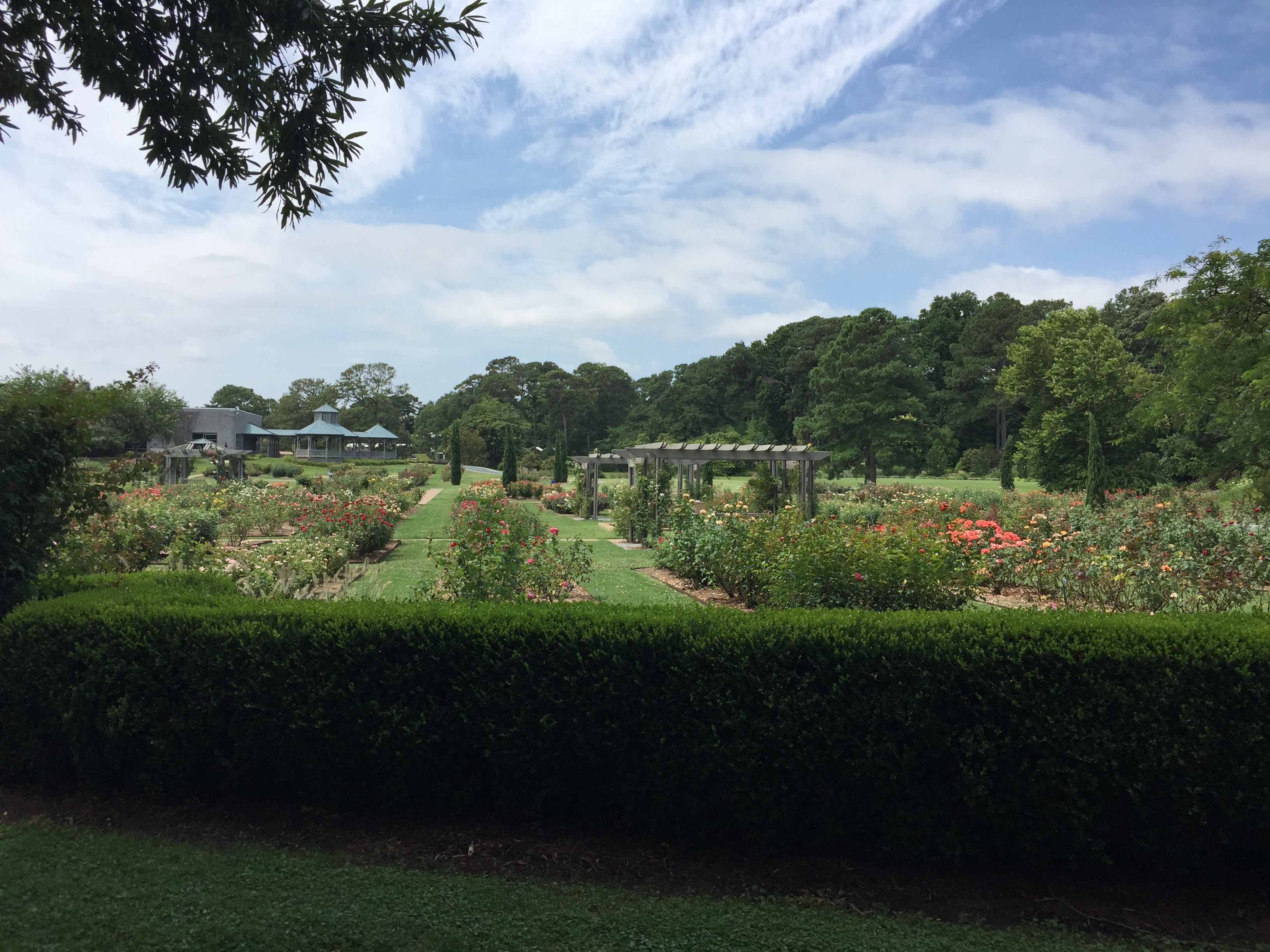 The tram tour gives an overview of garden areas. Photo © 2018 Elaine Mills.