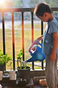 Child watering balcony garden