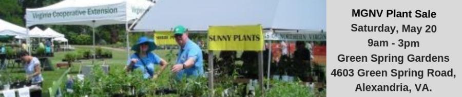 MGNV Plant Sale Greenspring Garden