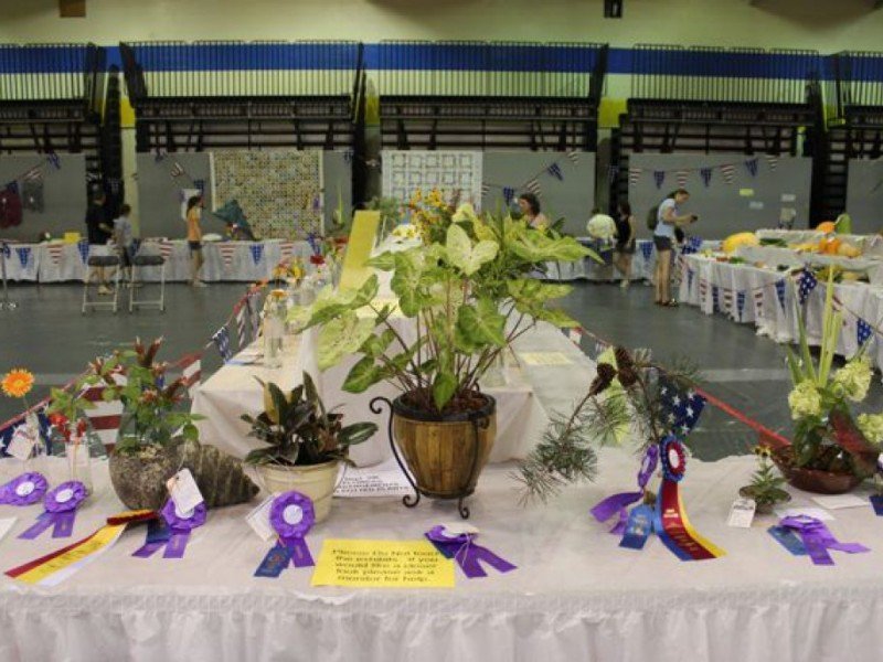 Prize winning plants