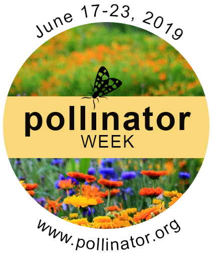 June 17-23, 2019 - Pollinator Week - www.pollinator.org