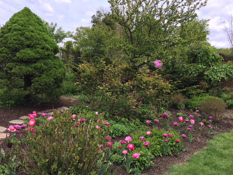 Quarry Shade Garden At Bon Air Park: Regional Gardens: Ladew Topiary Gardens