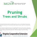 pruning_trees_shrubs