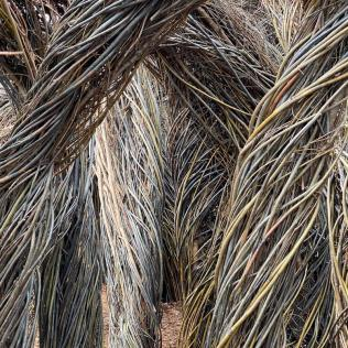 Woven plant material includes branches of willow and several invasive tree species. Sculpture by Patrick Dougherty.