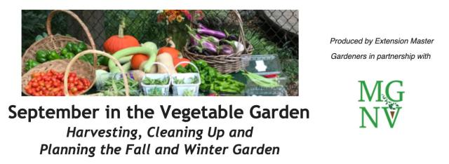 September in the Vegetable Garden: Harvesting, Cleaning Up and Planning the Fall and Winter Garden
