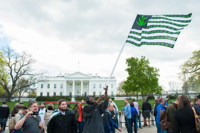 Washington D.C. Marijuana
