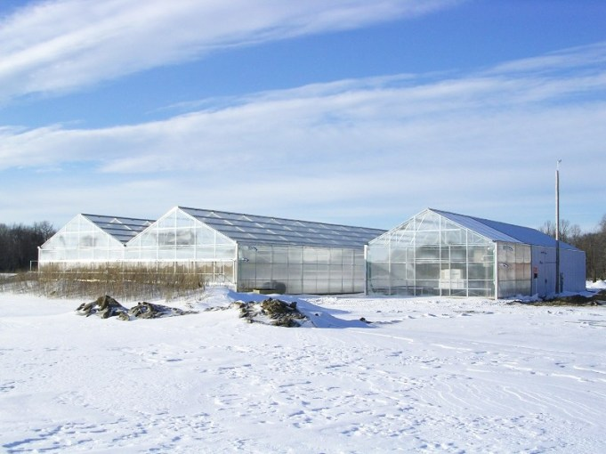 Winterizing your greenhouse