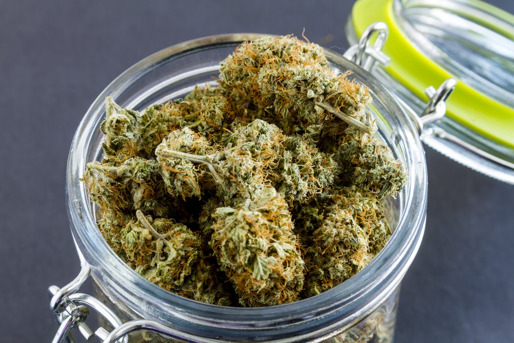 California Finally Issues First Licenses to Sell Legalized Marijuana