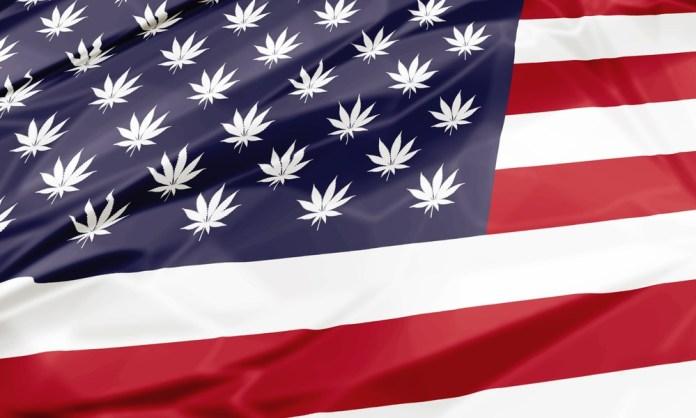California Marijuana United States