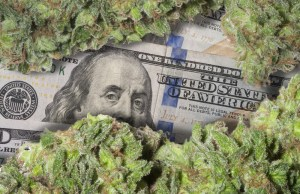 mg magazine cannabis prices drop