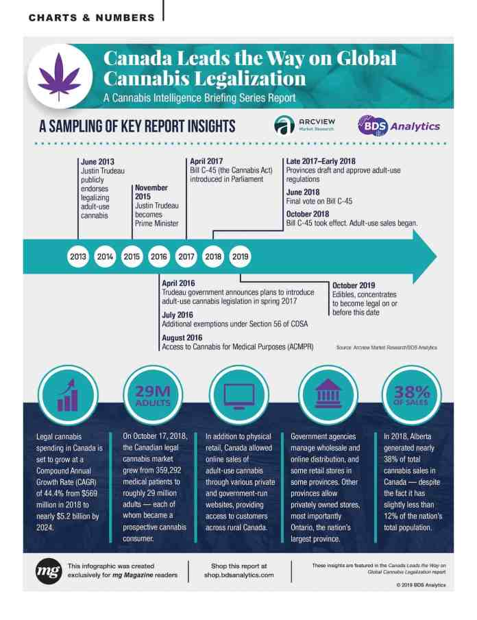 Canadian Cannabis Legalization Infographic by BDS Analytics