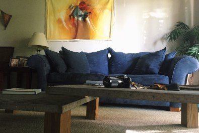 Forgotten Beauty, Couch, MGS Counseling