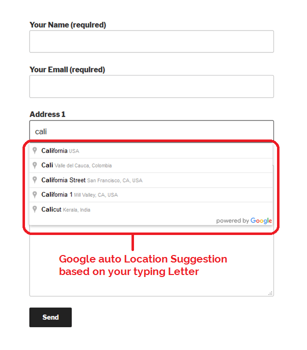 mgscformseven Google Auto Address Features