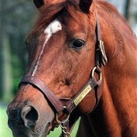 What Happened on June 9th - Secretariat and the Triple Crown