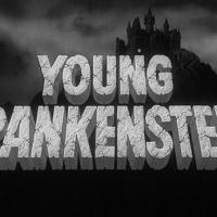 A 1970s Time Capsule from #AtoZChallenge @AprilA2Z - Y is for Young Frankenstein