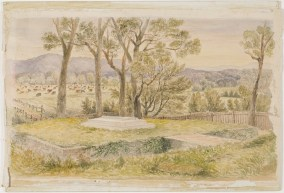 Grave of T.S. Mort, Bodalla, 1898 [watercolour]