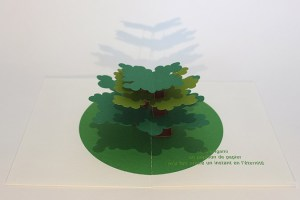 "Carte pop-up Arbre cèdre ""Eté"", vue de profil"