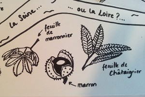 Valise projet définitif, pop-up Paris-Ardèche, feuilles et marrons