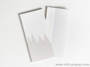 Livre d'artiste pages accordéon, Forêt de Neige rangé dans étui