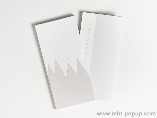 Livre d'artiste pages accordéon, Forêt de Neige, vue du livre rangé dans son étui