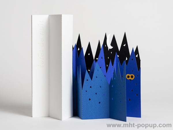 Livre d'artiste pages accordéon, Forêt de Nuit, vue du livre ouvert avec les pages dépliées